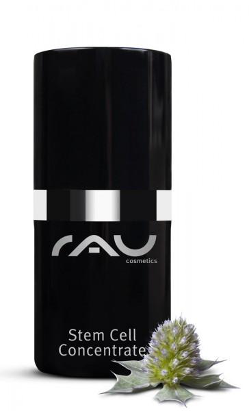 RAU Stem Cell Concentrate 15 ml - Anti-Aging Booster mit ganzen Stammzellen der Stranddistel ohne Mineralöle, Silikonöle, Parabene & PEGs