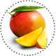 Mango_Mangifera
